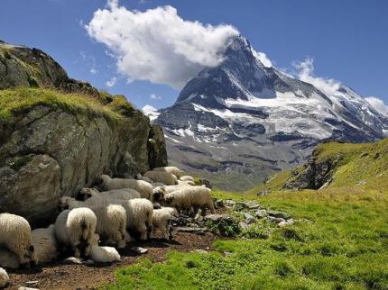 Krásy francouzských a ¹výcarských Alp