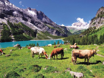 Letní pohoda ve východním Švýcarsku